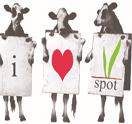 THE V SPOT Logo