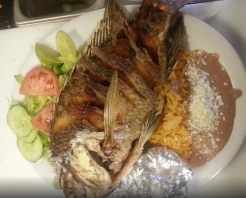 Tu Casa Mexican Restaurant in Gypsum, CO at Restaurant.com
