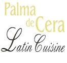 Palma De Cera Logo