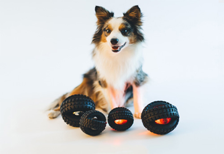 Pet Qwerks in Anywhere, CA at Restaurant.com