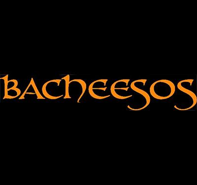 Bacheesos Logo