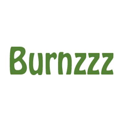 Burnzzz Logo