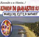 Rincon de Guayabitos #3 Logo
